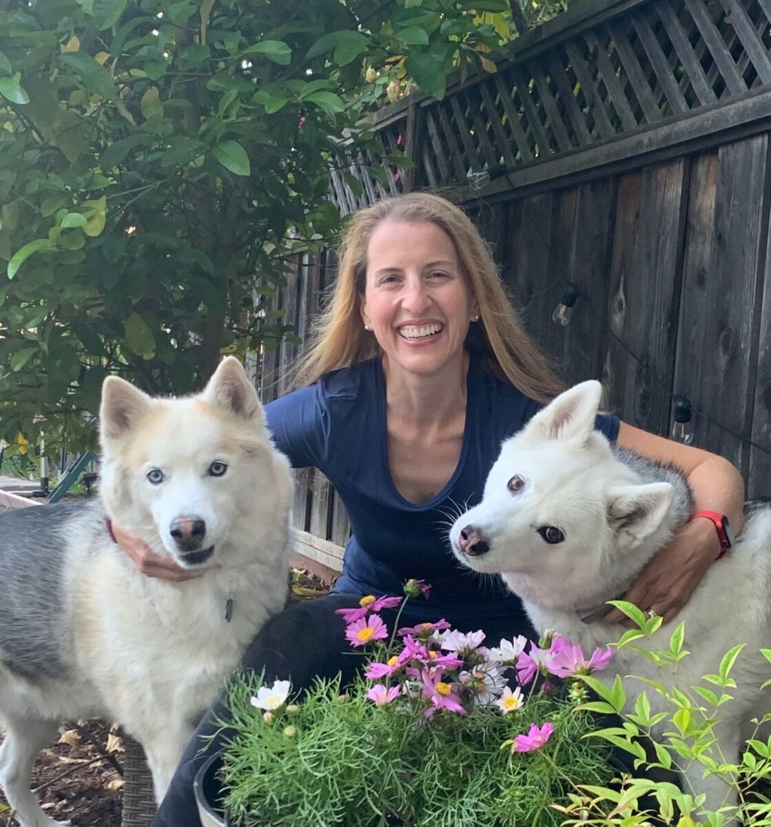 About - Golden Gate Veterinary Specialists